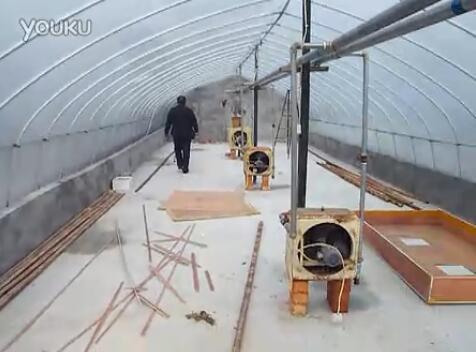 蝎子养殖大棚(塑料大棚)视频实拍